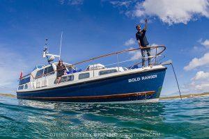 Basking shark boat