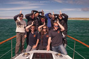 Happy basking shark divers