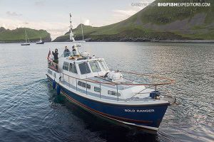 Our basking shark diving boat in Hirta Island