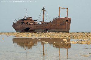 Ithaca wreck