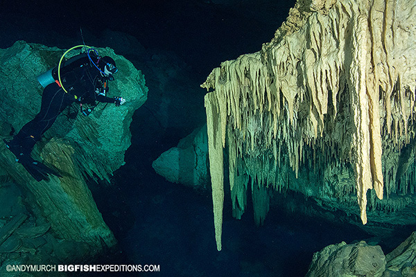 Cenote diving