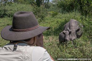 Walking with rhinos uganda