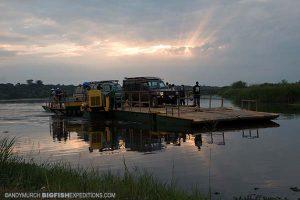 Bush Ferry