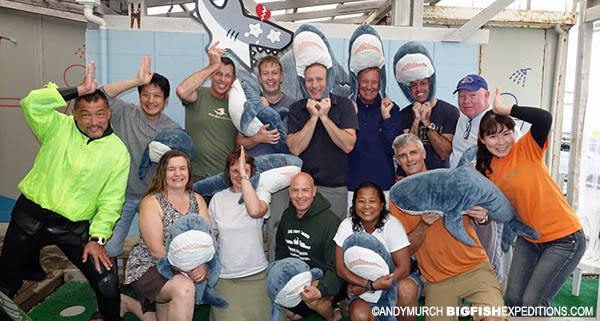 Japanese shark diving safari 2017