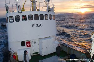 Sula - Norwegian Killer Whale Expedition Ship