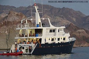 Rocio del Mar liveaboard in the sea of cortez