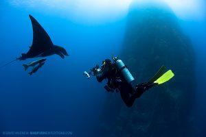 Diving with manta rays at Socorro