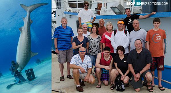 Big Fish Expeditions Tiger Beach Trip