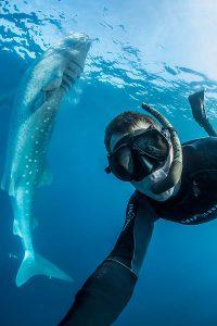Selfie with a whale shark