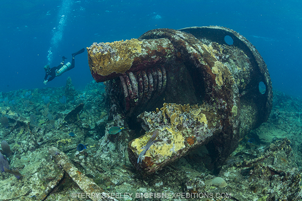 Diving the wreck of the Ginger Scout