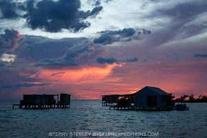 Sunset on our 2016 American crocodile diving trip