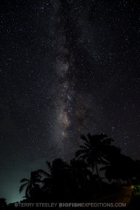 Beautifully lit night sky in Mexico. Milky Way.