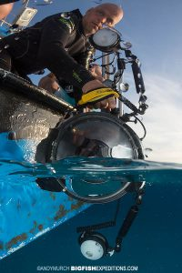 shooting split frame images underwater