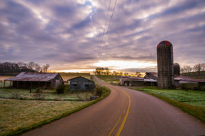 Tennessee Farm by Jennifer Idol