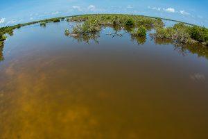 The lagoon in Cayo Grande, Chinchorro.