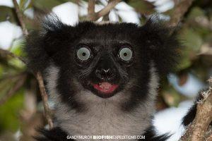 Madagascar Trekking Adventure