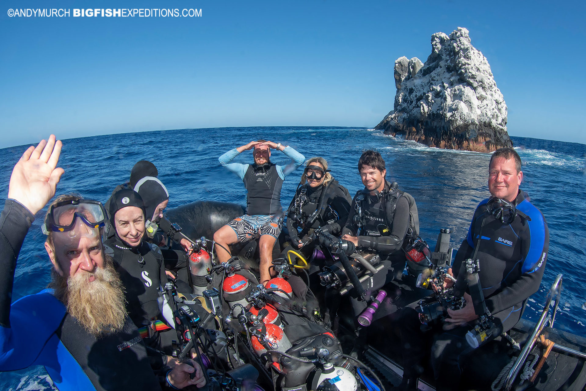 Shark diving at Roca Partida in Socorro.